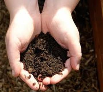 Clump o' Dirt