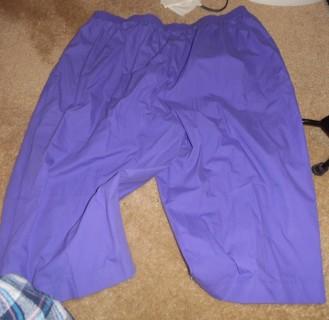 New - Shorts - 26W - Capri's
