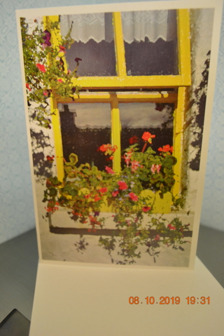 "****""YELLOW WINDOW"" BLANK CARD W/ENVELOPE***FREE SHIPPING"