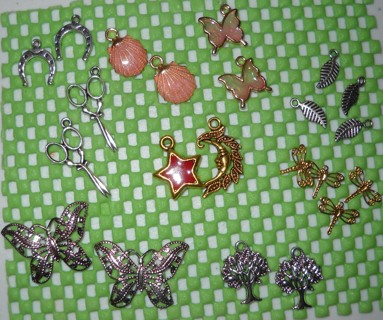 20 Piece Variety Charms