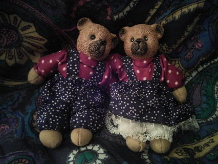 A pair of bears are searching for a home!