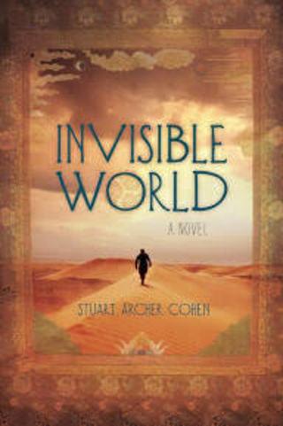 INVISIBLE WORLD by Stuart Cohen (HB/DJ-VGC/1st ED) #LLP1jh