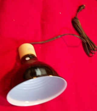 Free Multipurpose Heat Lamp Great For Newborn Puppies