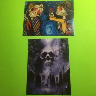 Skull/Skeleton magnets!