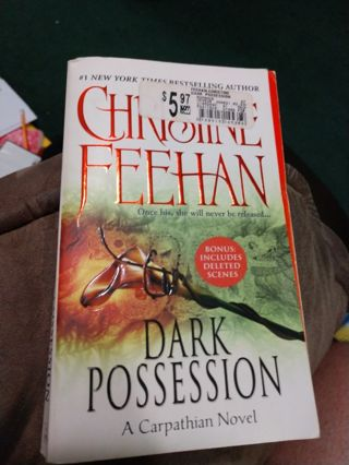 Dark Possession by Christine Feehan (paperback)