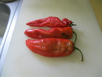 10+ Hatch Pepper Seeds