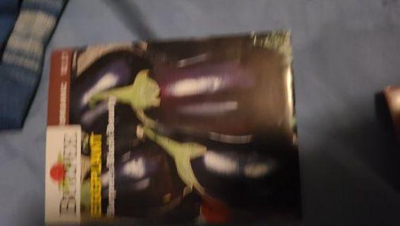 Eggplant- bag 8