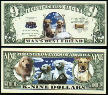 Man's Best Friend Adorable K9 Novelty Dollar In High Quality Bill Display Case