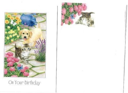 Birthday Card Unused With Envelope Cute Dog and Cat