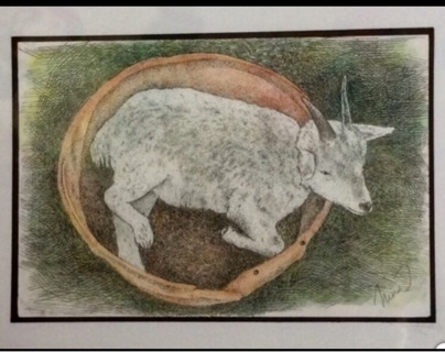 "BABY GOAT - 5 x 7"" art card by artist Nina Struthers - GIN ONLY"