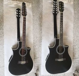 22/6 string acoustic electric double