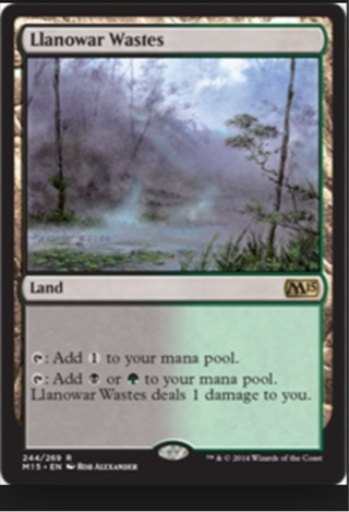 Llanowar Wastes • MTG land Rare (Free Shipping GIN)