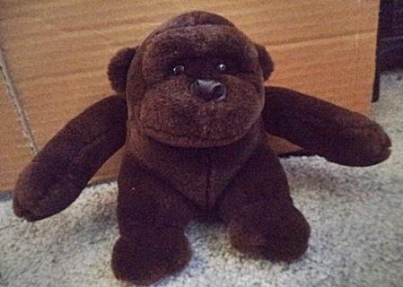 Brown Monkey / Ape
