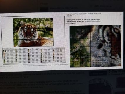 Bengal Tiger Cross Stitch Patterns ***Winners Choice***