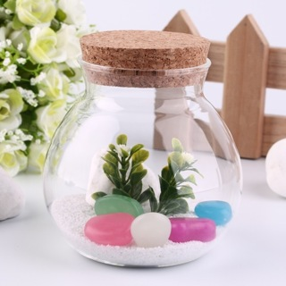 Cute Design Tea Coffee Sugar Glass Canisters Flower Plant Vase Popular New