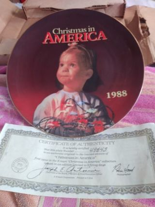 Christmas in America plate