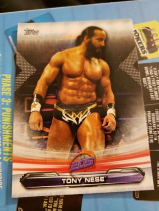 WWE Card Lot (2019)
