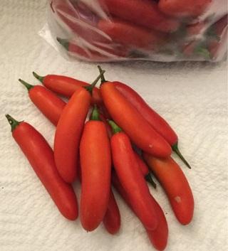 Serrano Pepper 20+