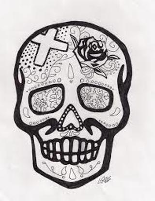 Another Beautful Skull Drawing