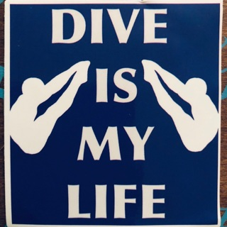 Diving board sticker