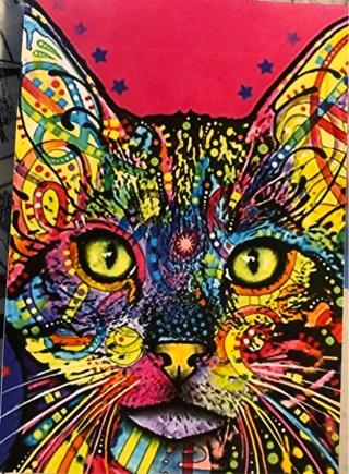 "Colorful Cat art - 3 x 5"" MAGNET"