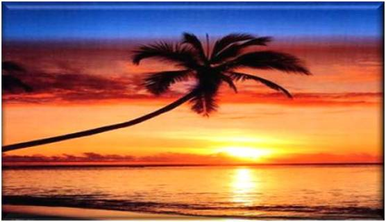 Scenic Tropical Refrigerator Magnet #3