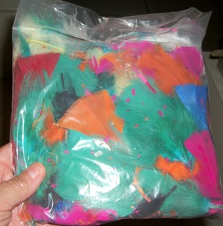 Bag of Feathers, Perfect for Crafts.  Variety of Colors & Sizes