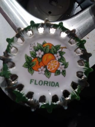 Cute collectible Florida plate