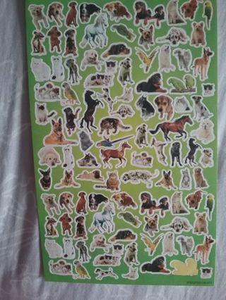 1 sheet pet stickers