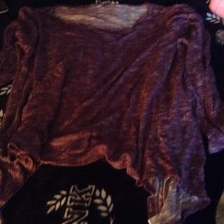 Lisa Rhinna purple shirt