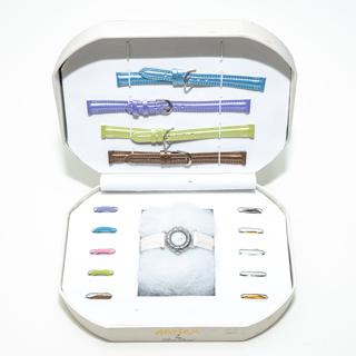 Arnex by LP Lucien Piccard Watch Set