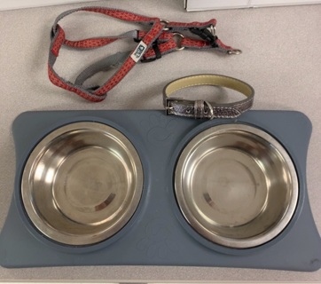 Small Dog or Puppy Starter Items - Feeding bowls. Collar. Harness