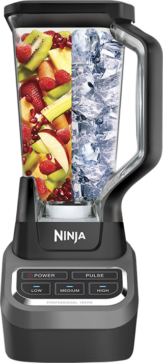 Ninja - Professional 1000 3-Speed Blender - Black/Silver