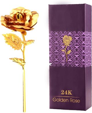 Beautiful Golden Rose