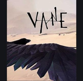 Vane steam key