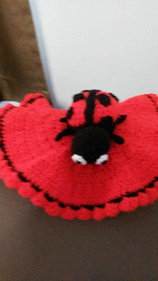 Ladybug Lovey toy