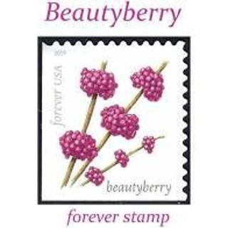Used Forever Stamp - Beautyberry
