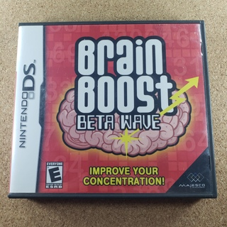 Brain Boost Nintendo DS Game