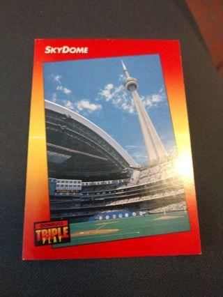 Baseball Card - Skydome 1992