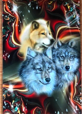 "Wolf Triptych -  3 x 5"" MAGNET"