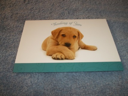 Thinking of You Card/White Envelope (puppy)
