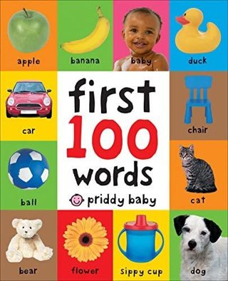 Brand New Priddy Books: First 100 Words