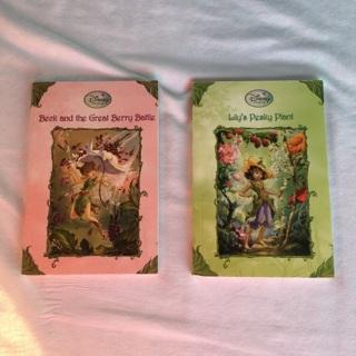 2 Disney Fairies Books