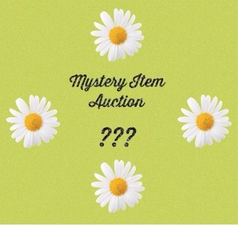 Mystery Item Auction