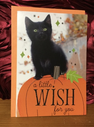 Black Kitten Halloween Card with Envelope