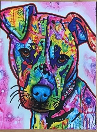 "ADORABLE DOG - 4 x 5"" MAGNET"