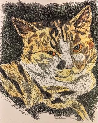 """CALICO CAT - 5 x 7"""" art card by artist Nina Struthers - GIN ONLY"""