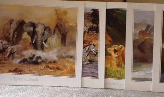 FIVE AFRICA ANIMAL PAINTING POSTCARDS