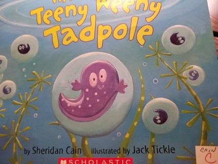 The Teeny Weeny Tadpole