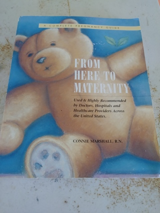 From here to Maternity book